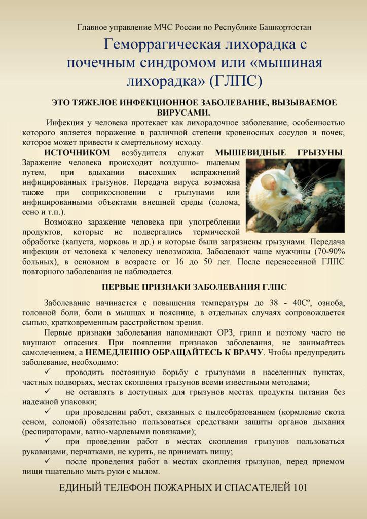 Памятка мышиная лихорадка